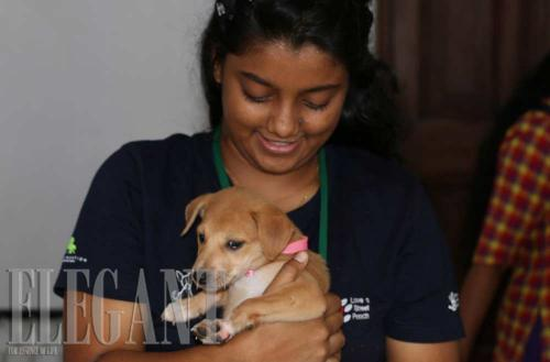 Embark celebrates 10 years of 'Pashionable' service